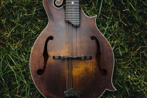 Mandolin waiting in grass for someone to learn how to play it