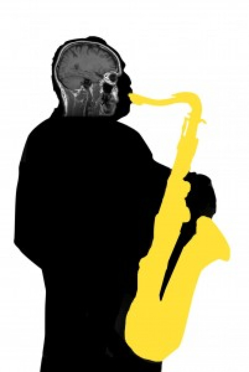 Brain Function and Music Education, LessonFace.com