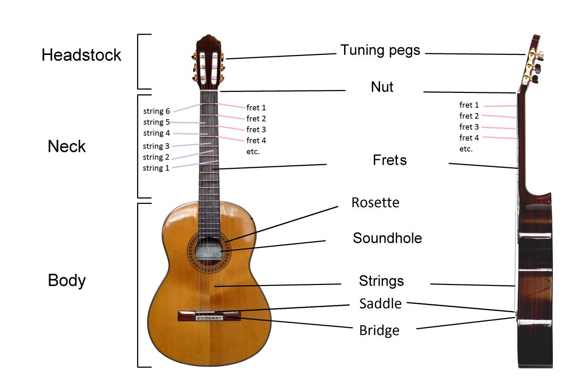 Guitar 101 for Parents of New Guitarists | Lessonface